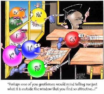 det periodiske system hovedgrupper